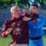 Wing Chun Wudao3