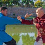 Wing Chun Wudao6
