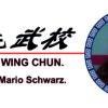 Circulo profes wingchun-2B